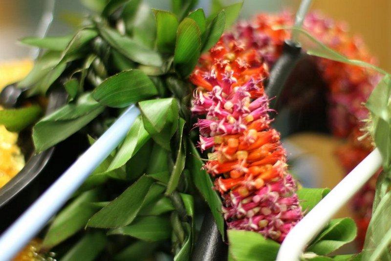 Ti leaf lei made by Aunty Jane Kaneshiro